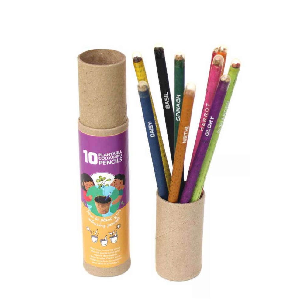 10 Colouring Seed Pencils