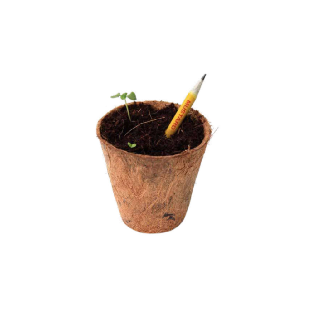Plantable Classic Seed Pencil